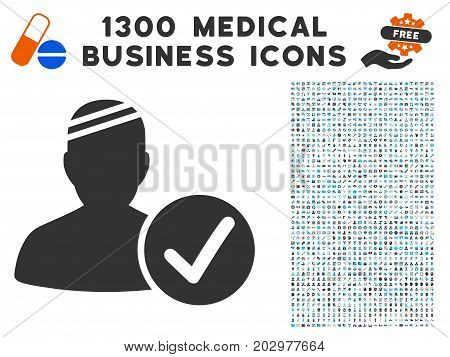 Patient Valid gray vector icon with 1300 health care business pictograms. Set style is flat bicolor light blue and gray pictograms.