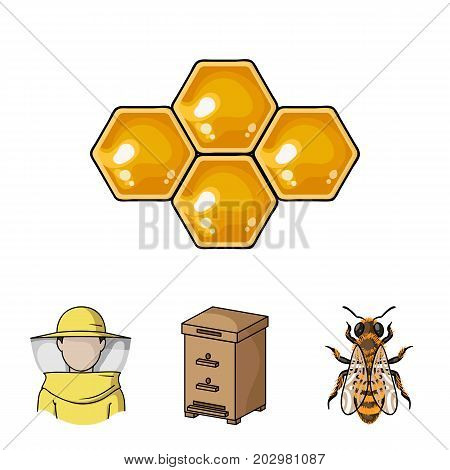The bee, the bee-keeper in the mask, the honeycomb of the honey.Apiary set collection icons in cartoon style vector symbol stock illustration .