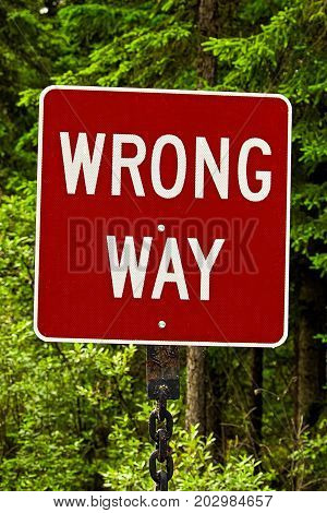 A Red Wrong Way Sign Against Trees