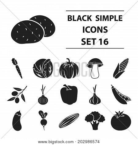 Vegetables set icons in black style. Big collection vegetables vector symbol stock