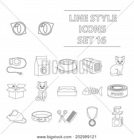 Cat equipment set icons in outline style. Big collection of cat equipment vector symbol stock
