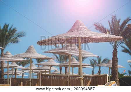 Umbrella and beach. Beach straw umbrella with palm tree. Relax and holiday. Sunny blue sky at resort. Summer vacation and traveling.