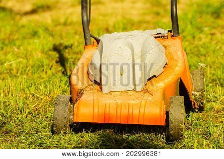 Gardening. Mowing Lawn With Lawnmower