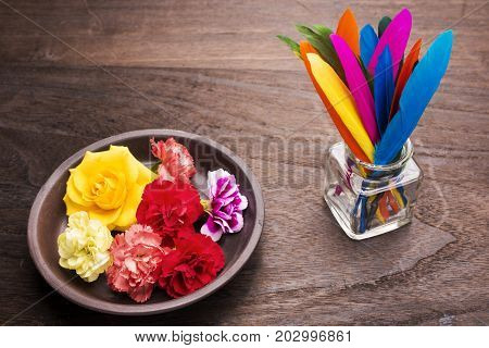 Standing colorful remiges feathers and colorful roses