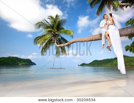 beautiful couple on the beach in wedding dress on palm tree
