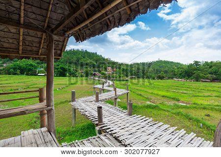 Bamboo Bridge Boon Ko Ku So Over Paddy Fields Near Pai; Thailand