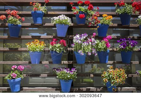 Vertical Garden Full Of Geranium Flower Pots. Modern And Traditional Andalusian Style