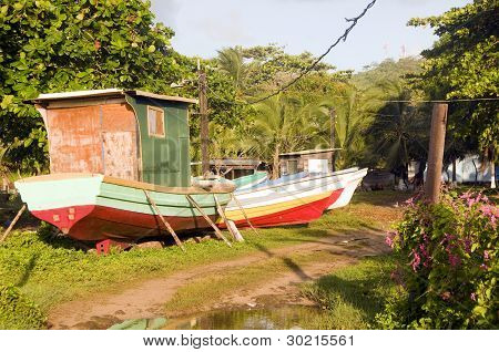 Fishing Boats In Jungle Big Corn Island Nicaragua
