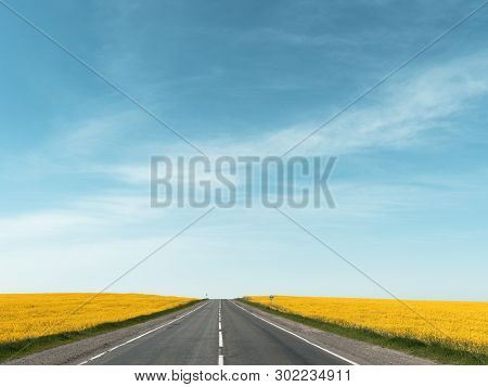 Highway Among Rapeseed Yellow Field Against A Blue Sky