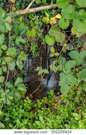 Smooth Little Waterfall In Amongst Green Leaves