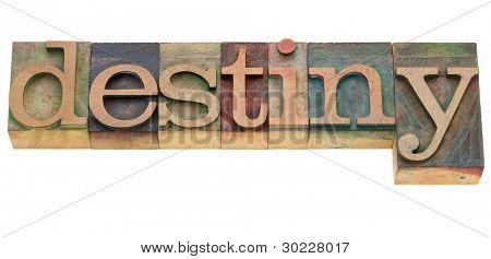 destiny - isolated word in vintage wood letterpress printing blocks