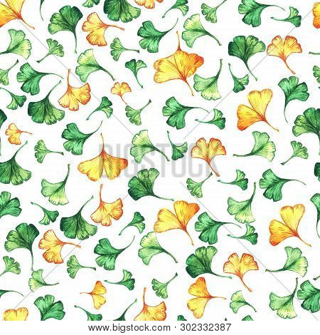 Ginkgo Biloba Leaves Floral Watercolor Seamless Pattern. Tree Plant Known As Ginko Or Gingko. Ginkgo
