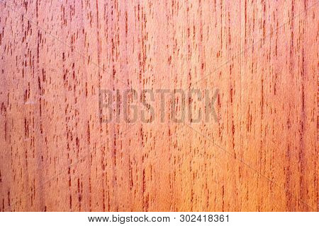 Closeup Of The Rib Of A Medium Oak Varnished Marine Carpentry Board
