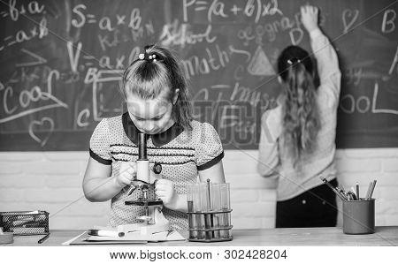 Chemistry Classes. Educational Experiment. Girls Classmates Study Chemistry. Microscope Test Tubes C