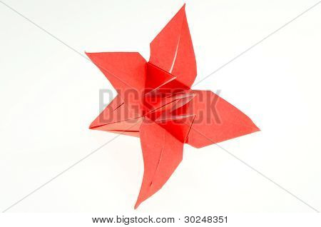 Origami Paper Folding Lily