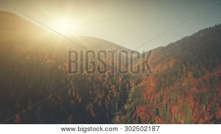 Colorful Highland Scenery Mist Weather Aerial View. Mountain Evergreen Forest Slope Misty Coniferous Landscape Sight. Soft Sunlight Eco Friendly Environment Concept Drone Flight