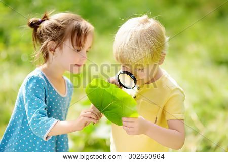 Kids Exploring Nature With Magnifying Glass. Close-up. Little Boy And Girl Looking On Leaf With Magn