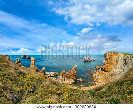 Beautiful Blossoming Atlantic Ocean Coastline Landscape With Yellow Flowers In Front (near Arnia Bea