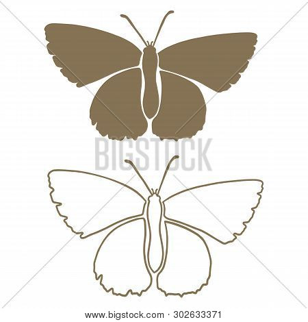 Cute Moth Silhouette Line Art Cartoon Vector Illustration Motif Set. Hand Drawn Nocturnal Insect