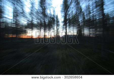 Conceptual Shot With Motion Blur From Zooming, In A Swedish Forest.