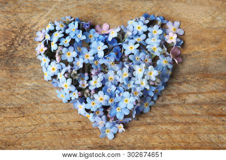 Heart Made Of Amazing Spring Forget-me-not Flowers On Wooden Background, Top View