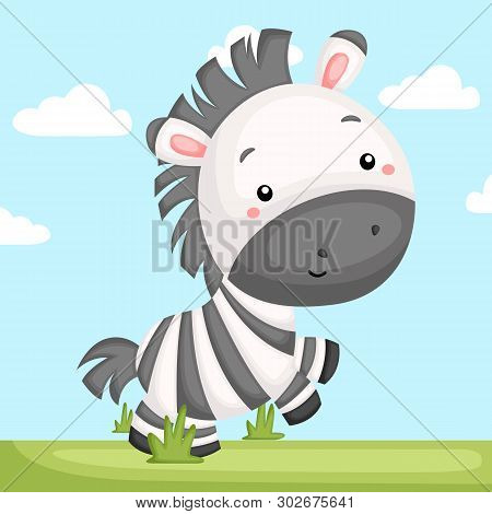 A Vector Of A Cute And Adorable Zebra