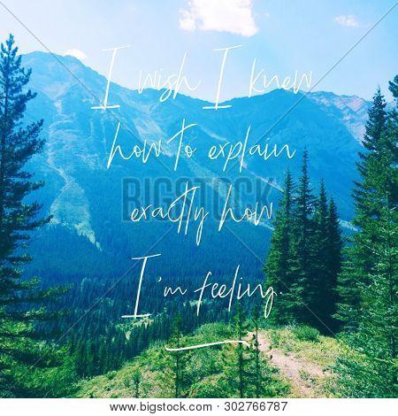 Quote - I wish I knew how to explain exactly how i'm feeling