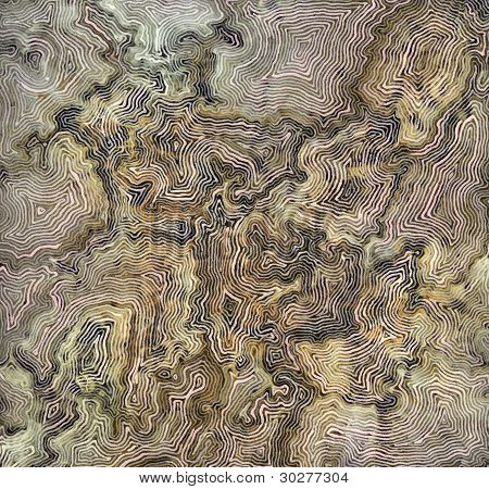 Abstract Fine-lined Background