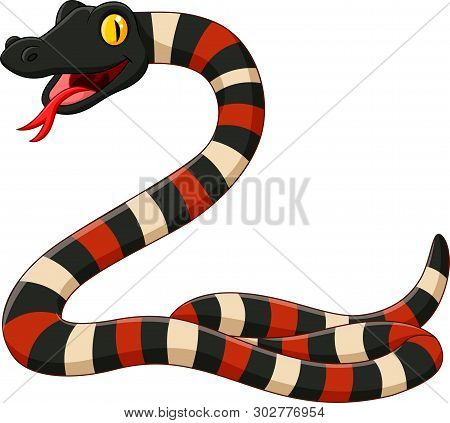 Cartoon Angry Coral Snake On White Background