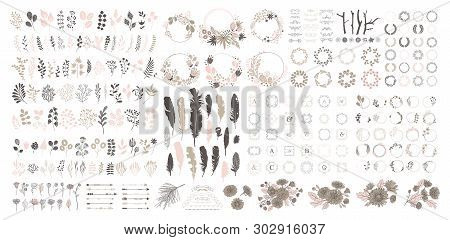 Big Set With Wreath, Design Elements, Frames, Calligraphic. Vector Floral Illustration With Branches