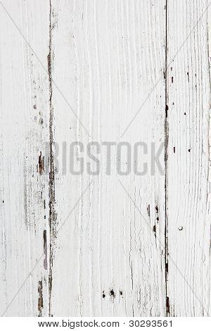 background - texture- white