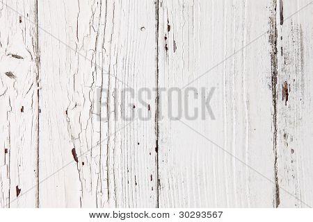 background - white
