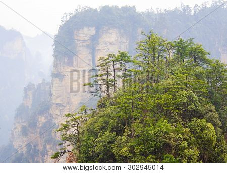 Zhangjiajie National Forest Mountains  Park,  Hunan. China.