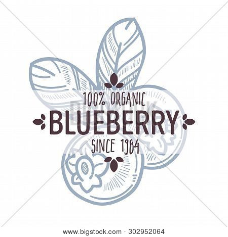 Blueberry Or Bilberry Isolated Icon With Lettering Forest Berry