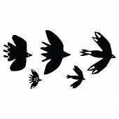 Cute bird flock silhouette cartoon vector illustration motif set. Hand drawn avian life elements clipart for birdwatching. poster