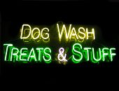neon sign advertising dog grooming and treats poster