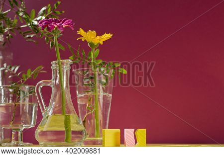 Beautiful Shadows From Glass Vases In Sunlight. Gerberas In Glass Bottles On A Pink Background. A Fl