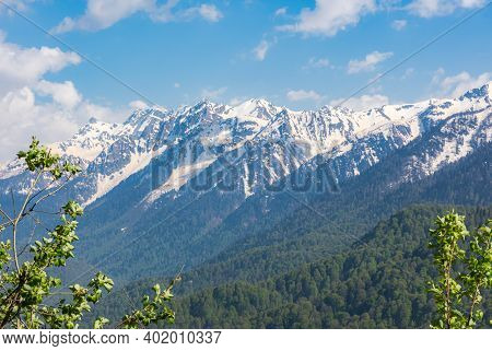 Snow-capped Mountains And Green Forest. The Caucasus Mountain Range. Spring Bright Sunny Day In The