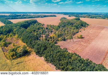 Summer Rural Landscape, Aerial View. View Of Countryside, Arable Fields And Forest