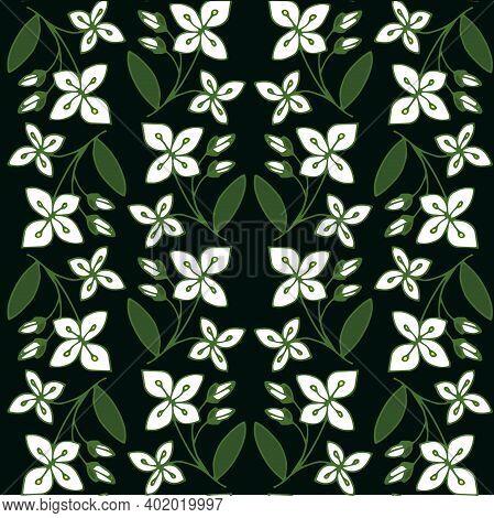 Sweet Mock Orange Seamless Pattern. White Flower On Black Botanical Art Design Stock Vector Illustra