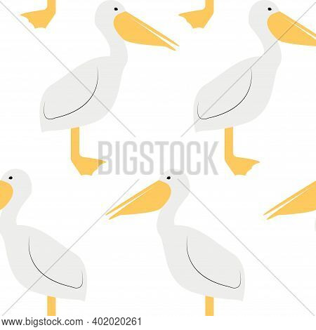 Seamless Pattern With Pelican. Cute Cartoon Character