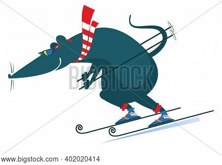 Downhill Skier Rat Or Mouse Illustration. Rat Or Mouse A Skier Isolated On White