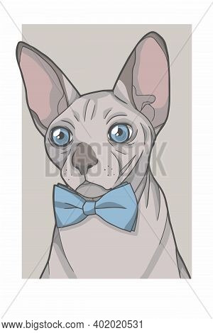 Hairless Sphynx Cat With Blue Bowtie Portrait Vector Graphic Illustration