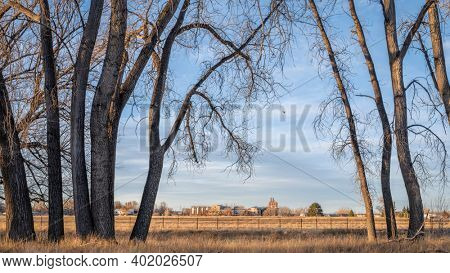 one of Fort Collins breweries as seen from Poudre River bike trail, fall or winter scenery