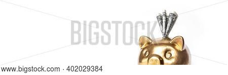 Gold Piggy Bank And Dollar Isolated On White Background - Saving Money Concept. Business, Finance Co