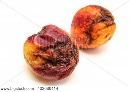 A Picture Of Two Rotten Nectarines. The Shape Is Deformed And They Are Inedible. Isolated On White B