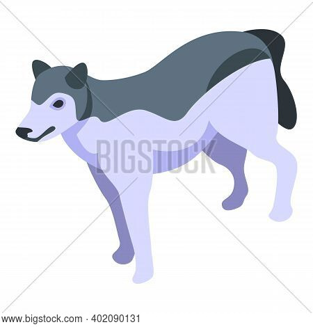 Husky Wolf Icon. Isometric Of Husky Wolf Vector Icon For Web Design Isolated On White Background