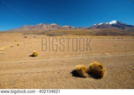 Desert Of Bolivia. Andean Altiplano In Bolivia.