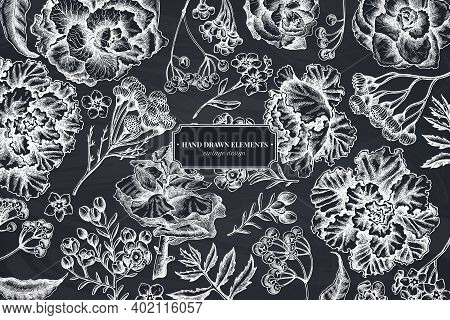 Floral Design With Chalk Wax Flower, Forget Me Not Flower, Tansy, Ardisia, Brassica, Decorative Cabb