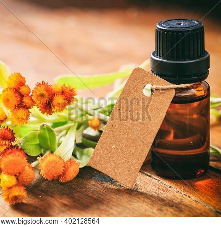 Helichrysum Essential Oil, Fresh Leaves And Blossoms On Wooden Background